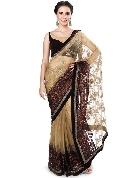 Net Saree Draping Styles